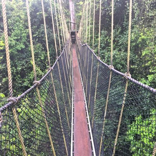 Kakum National Park Canopy